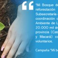 """Campaña """"Mi bosque del futuro""""."""