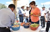 Feria agrícola se constituye en vitrina comercial de agricultores y emprendedores en el Sur del Ecuador - El Tambo